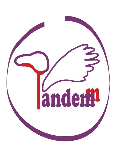 DTT. Logo kolor