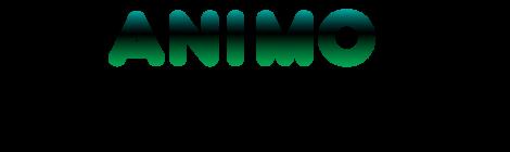 Międzynarodowy Festiwal ANIMO, Kwidzyn 2013