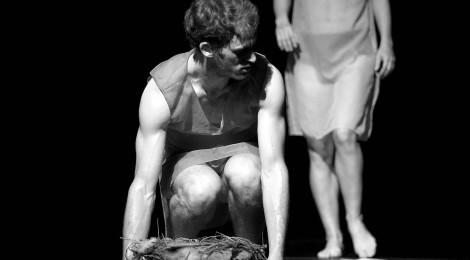 """Premiera spektaklu """"Nesting"""" w choreografii Idana Cohena"""