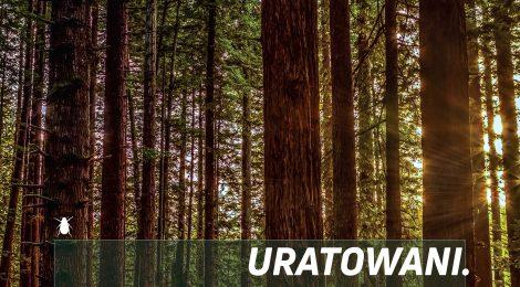 1-6.12.2017 | XV Wałbrzyskie FANABERIE Teatralne. URATOWANI